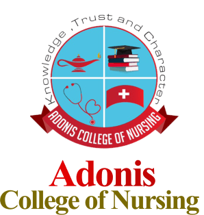 Adonis College of Nursing (USA)